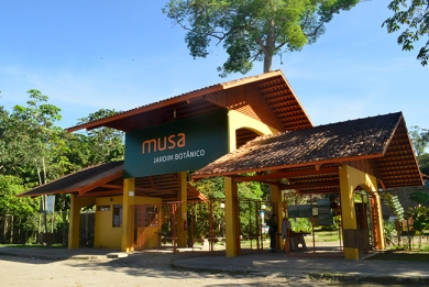 musa2