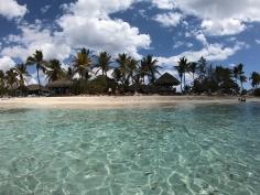 Isla Catalina_7